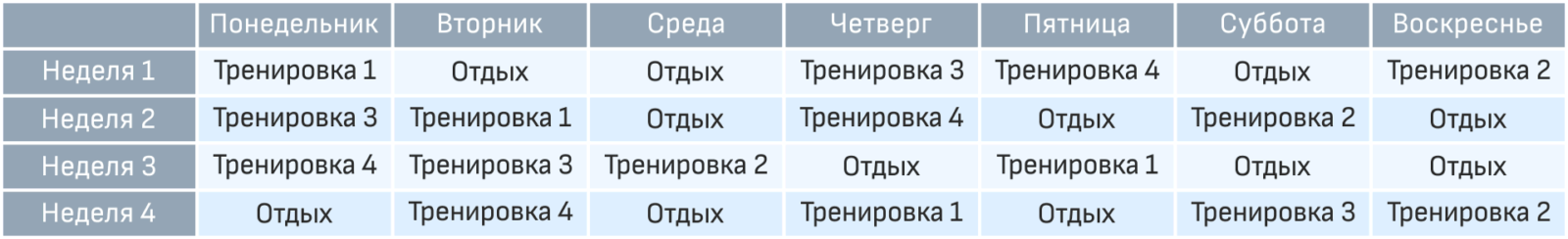 Вариант графика тренировок